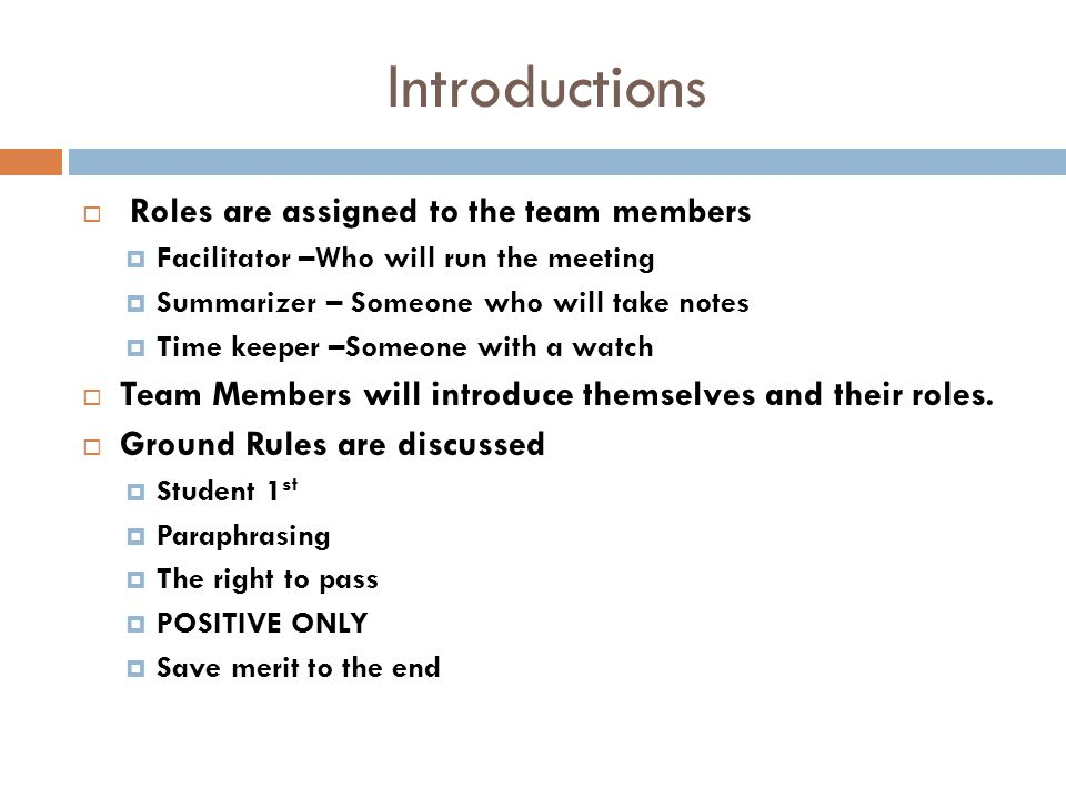 Introductions Roles are assigned to the team members