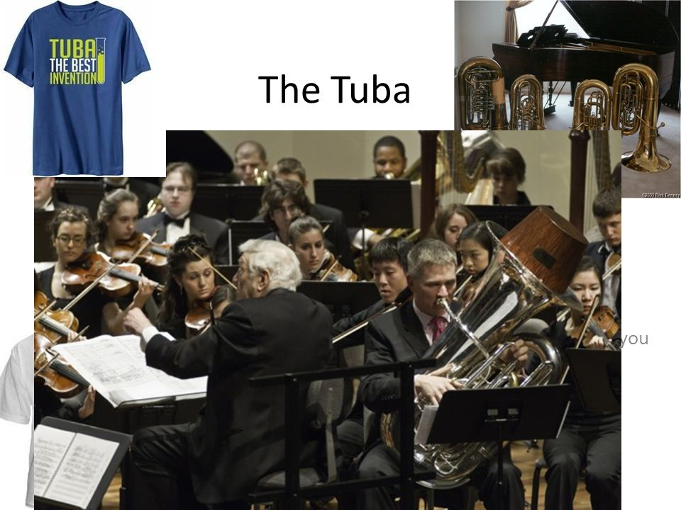 The Tuba Fun Fact. Tubas are the largest and lowest of the brass instruments. The first Friday in May is known as 'International Tuba Day
