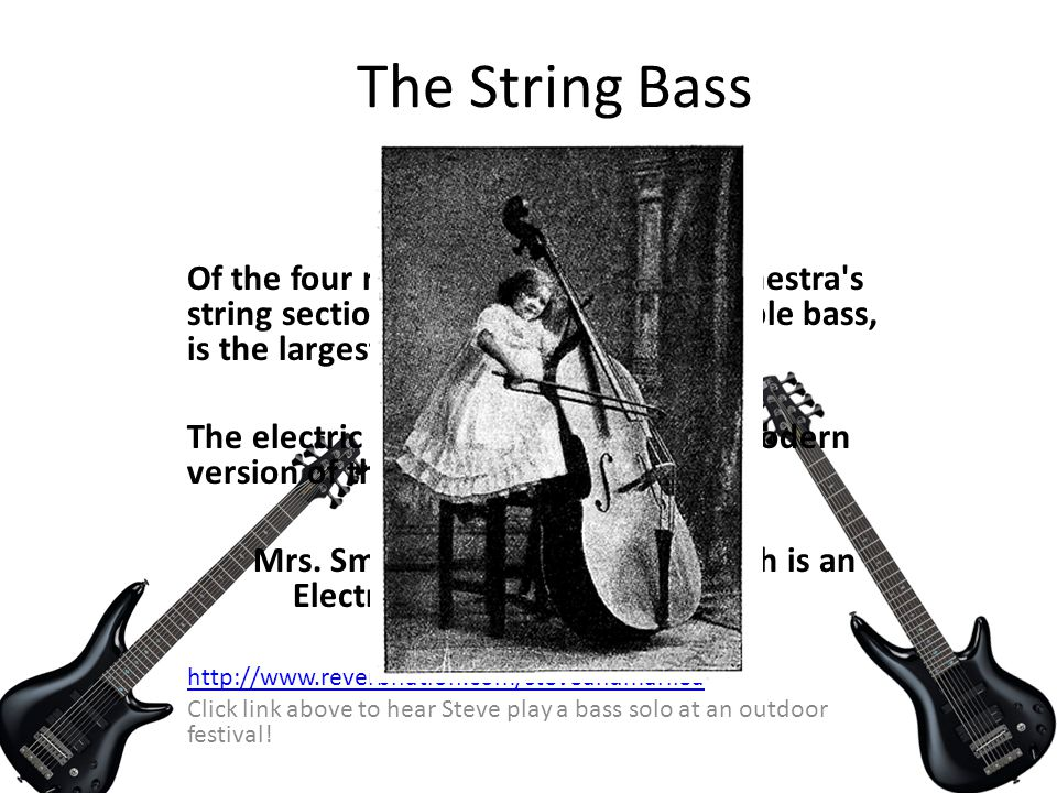 The String Bass FUN FACTS !