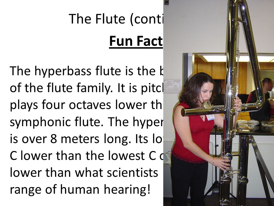 Fun Fact The Flute (continued)