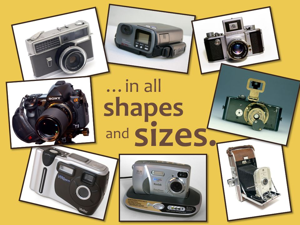 …in all shapes sizes. and