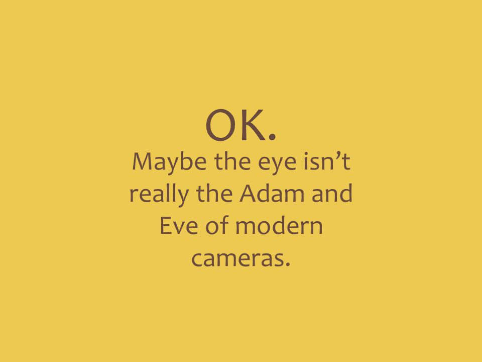 Maybe the eye isn't really the Adam and Eve of modern cameras.