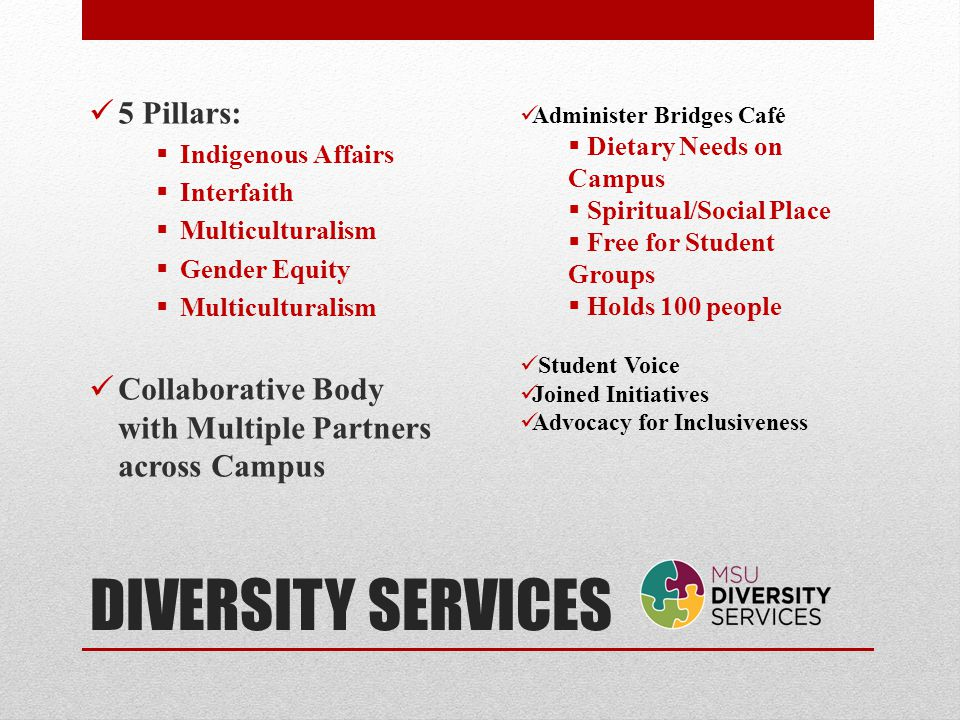 DIVERSITY SERVICES 5 Pillars: