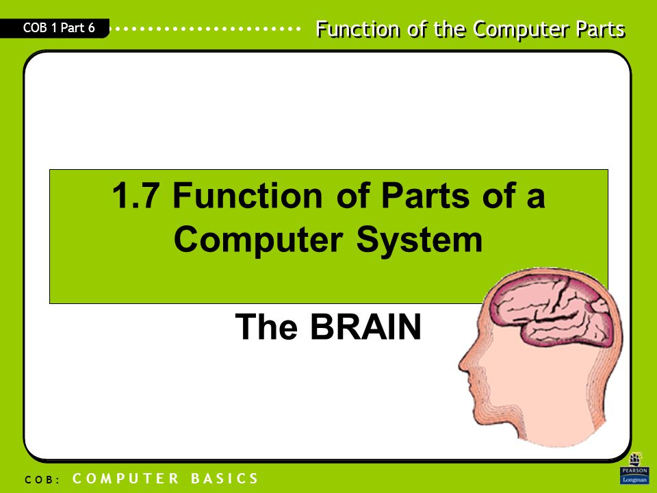 1.7 Function of Parts of a Computer System The BRAIN
