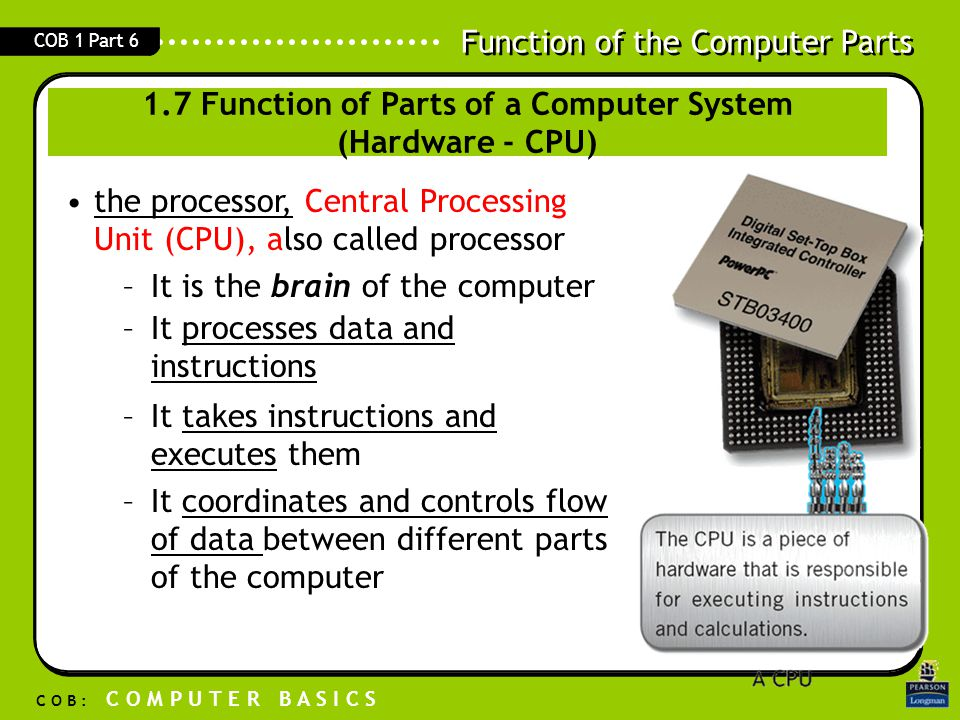 1.7 Function of Parts of a Computer System (Hardware - CPU)