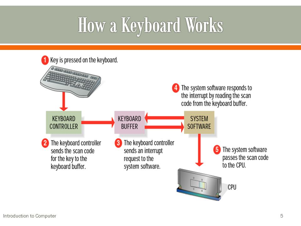 How a Keyboard Works Introduction to Computer