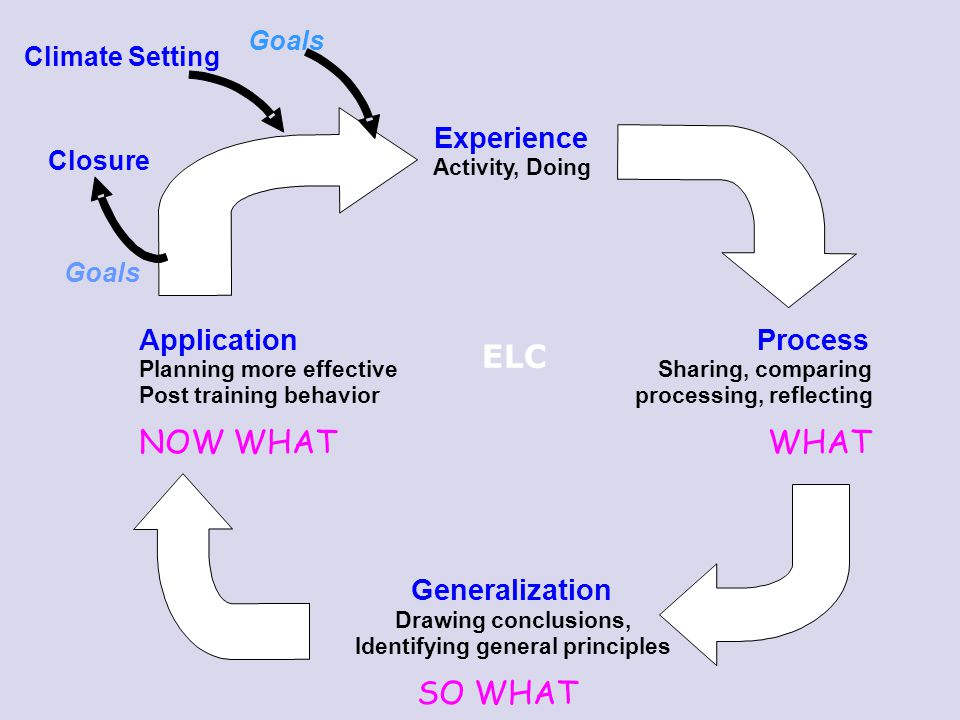 ELC NOW WHAT WHAT SO WHAT Experience Application Process