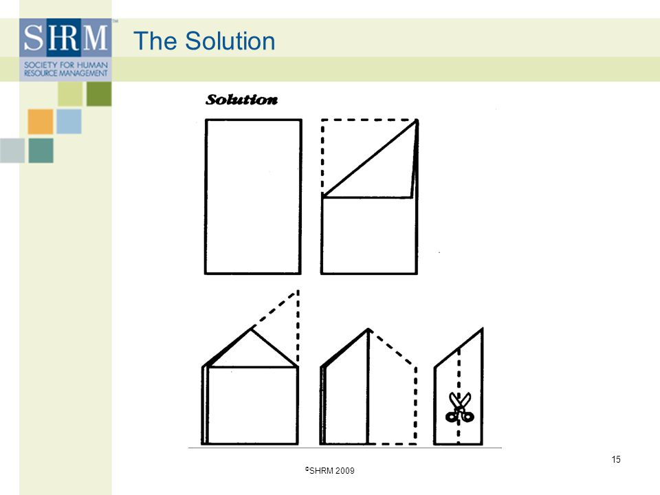 4/13/2017 The Solution ©SHRM 2009