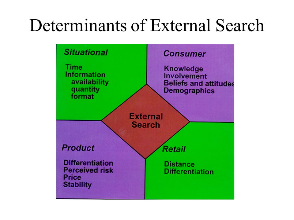 Determinants of External Search