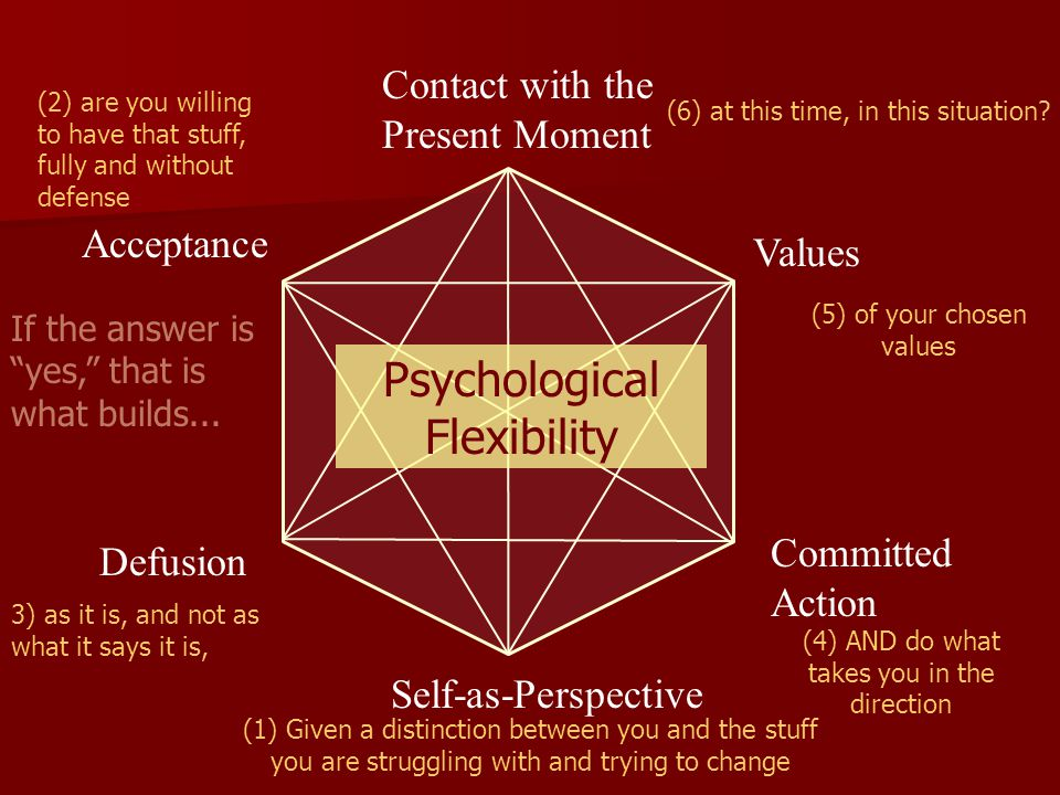 Psychological Flexibility Contact with the Present Moment Acceptance