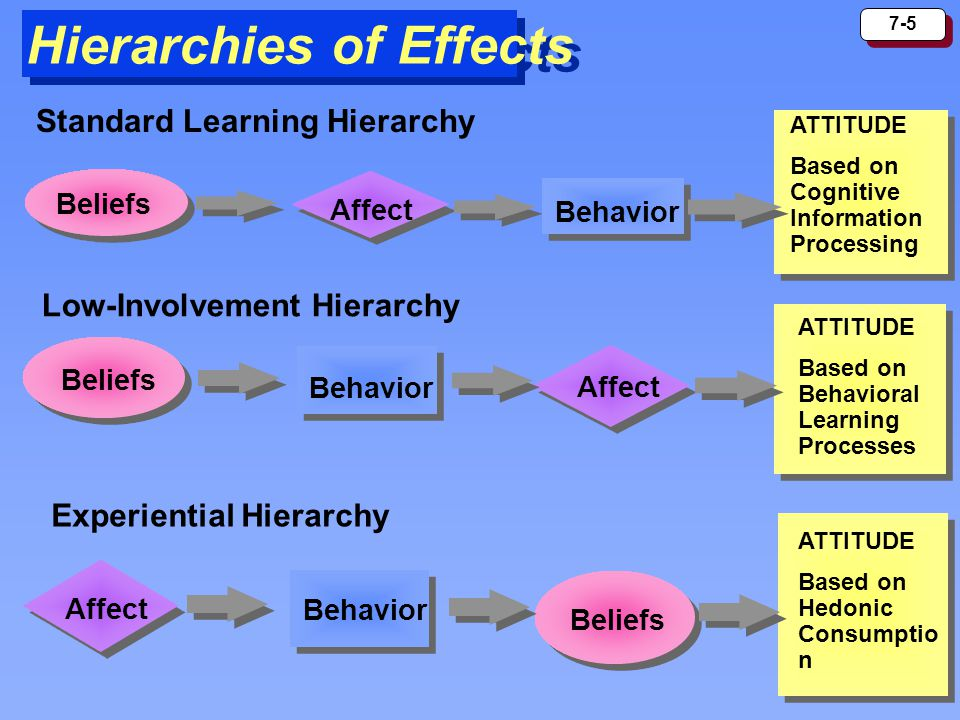 Hierarchies of Effects