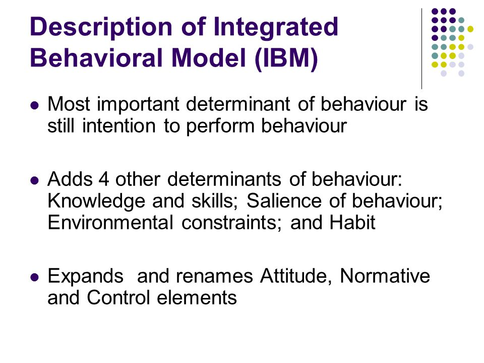 Description of Integrated Behavioral Model (IBM)