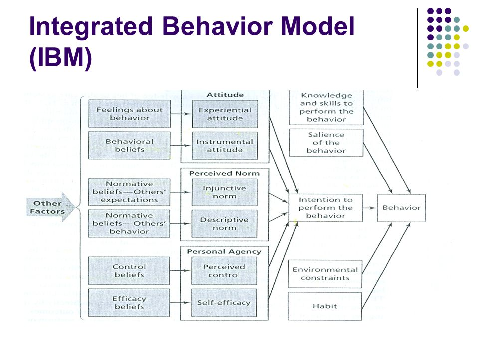 Integrated Behavior Model (IBM)