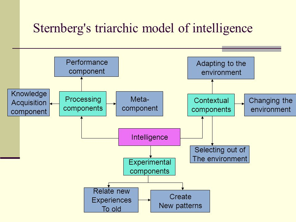 Sternberg s triarchic model of intelligence