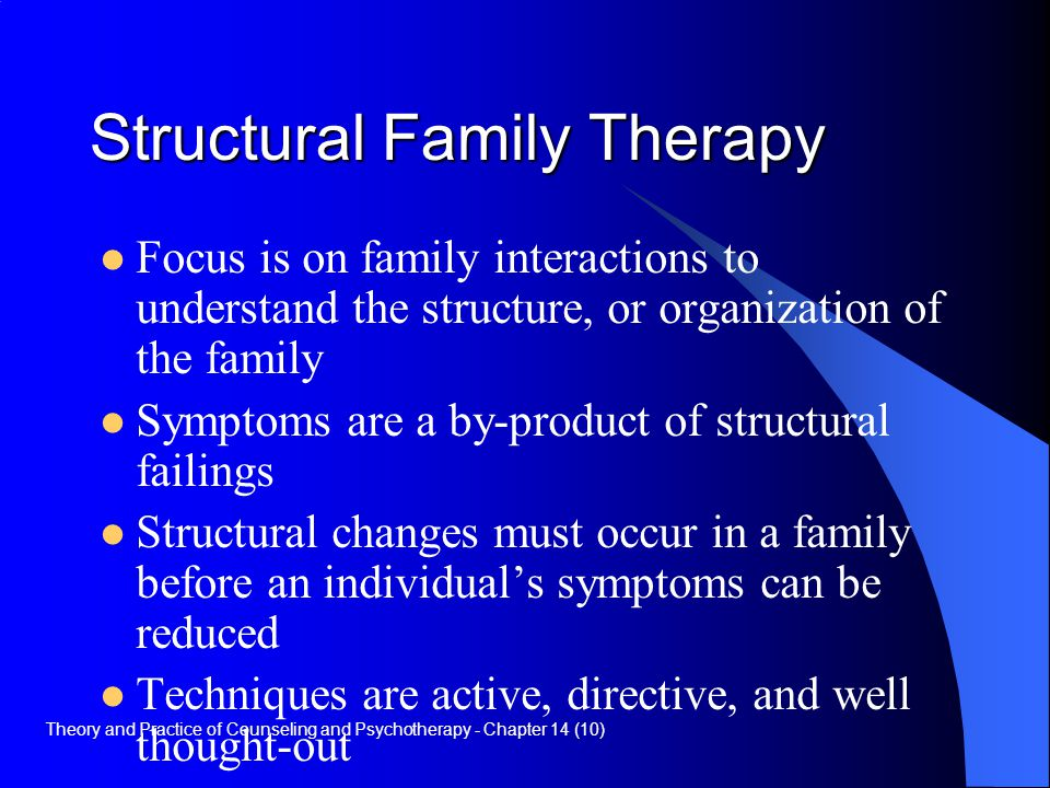 Structural/Functionalism Theory