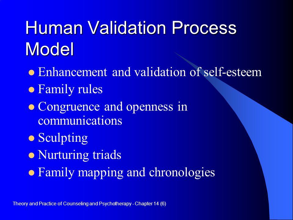 Human Validation Process Model
