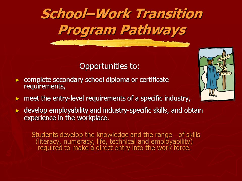 School–Work Transition Program Pathways