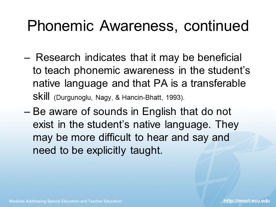 Phonemic Awareness, continued