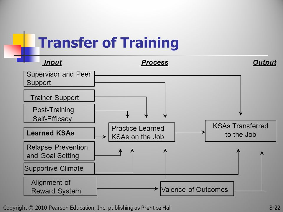 Transfer of Training Input Process Output Supervisor and Peer Support