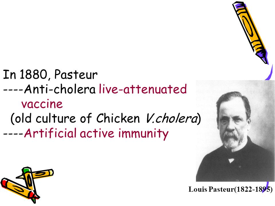 In 1880, Pasteur ----Anti-cholera live-attenuated. vaccine. (old culture of Chicken V.cholera) ----Artificial active immunity.