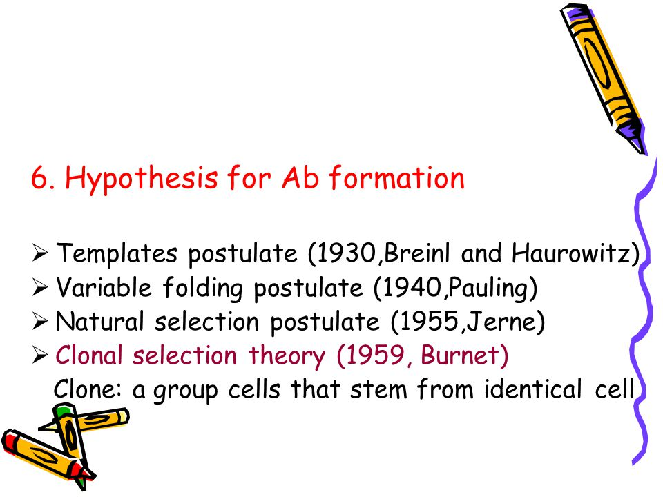 6. Hypothesis for Ab formation