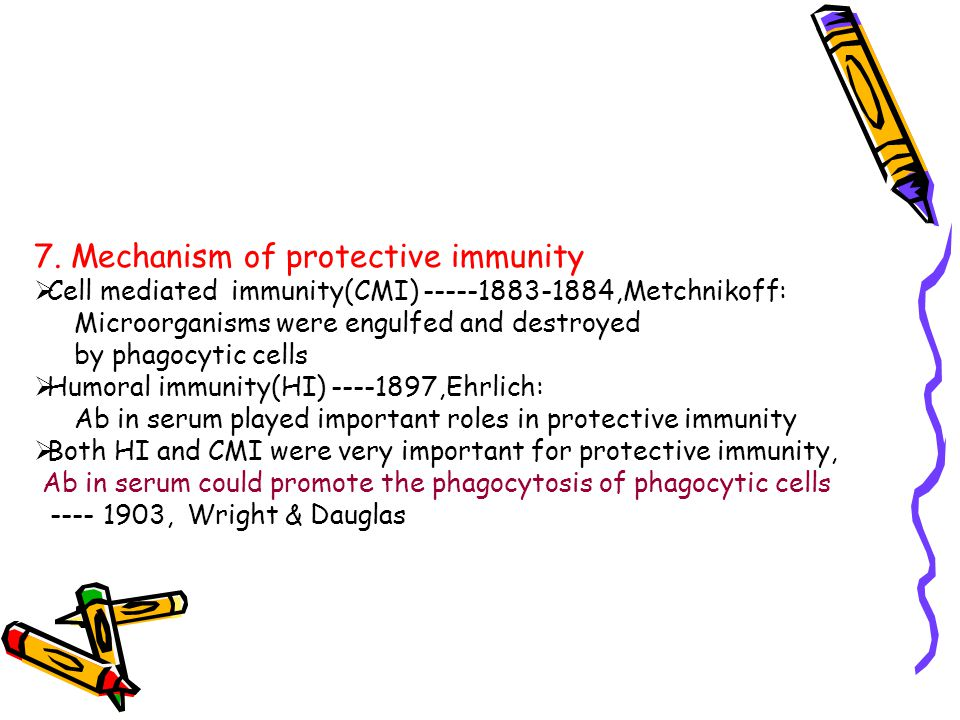 7. Mechanism of protective immunity