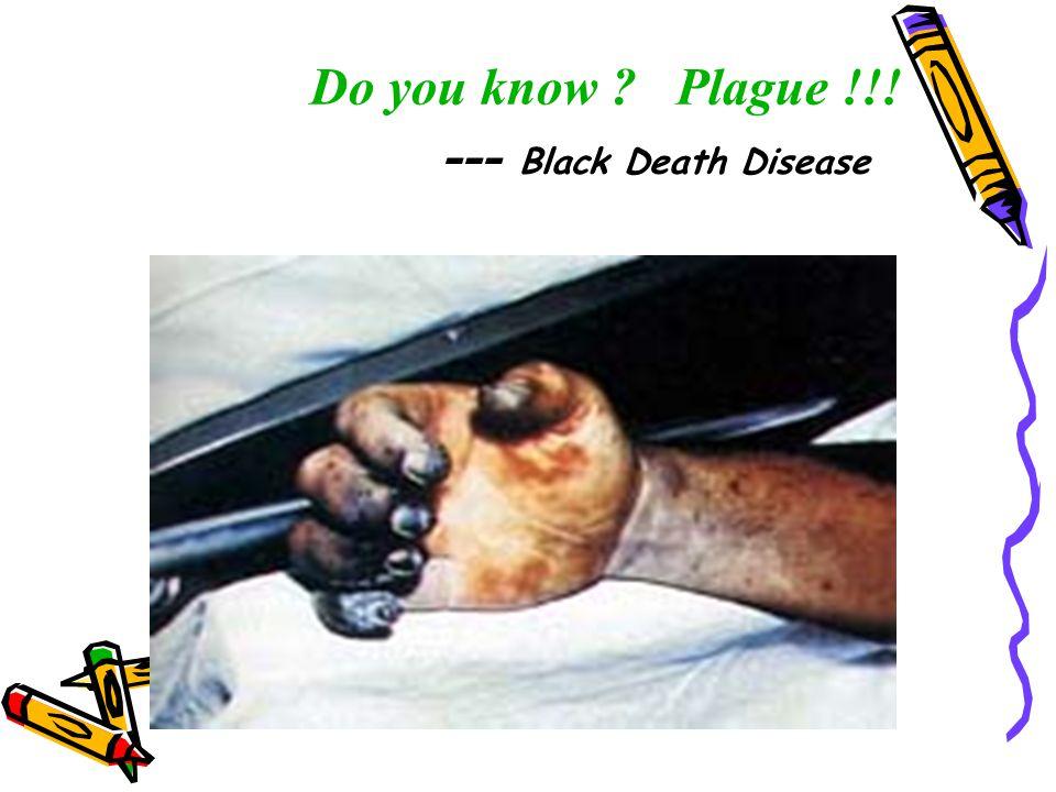 Do you know Plague !!! --- Black Death Disease