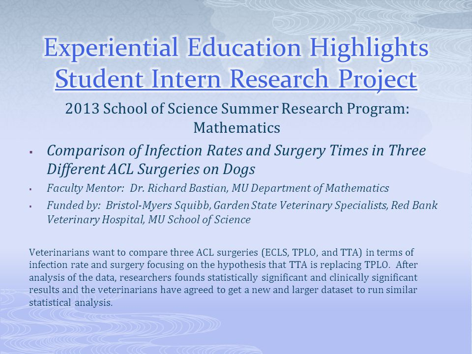 Experiential Education Highlights Student Intern Research Project