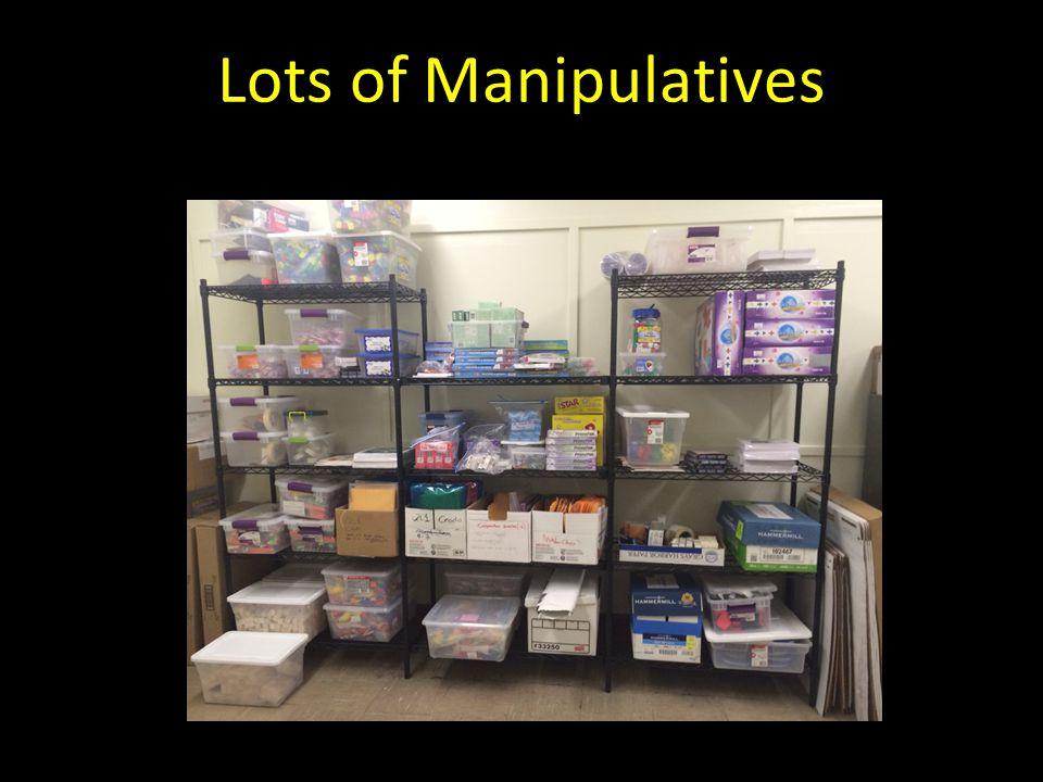 Lots of Manipulatives