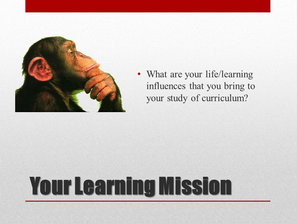 What are your life/learning influences that you bring to your study of curriculum