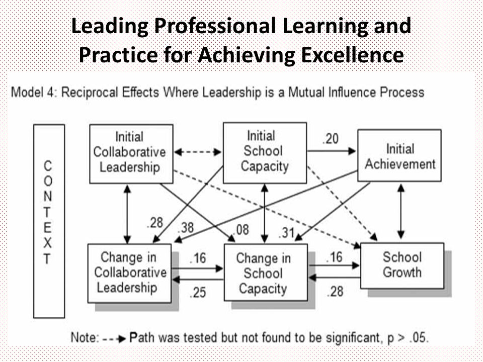 Leading Professional Learning and Practice for Achieving Excellence