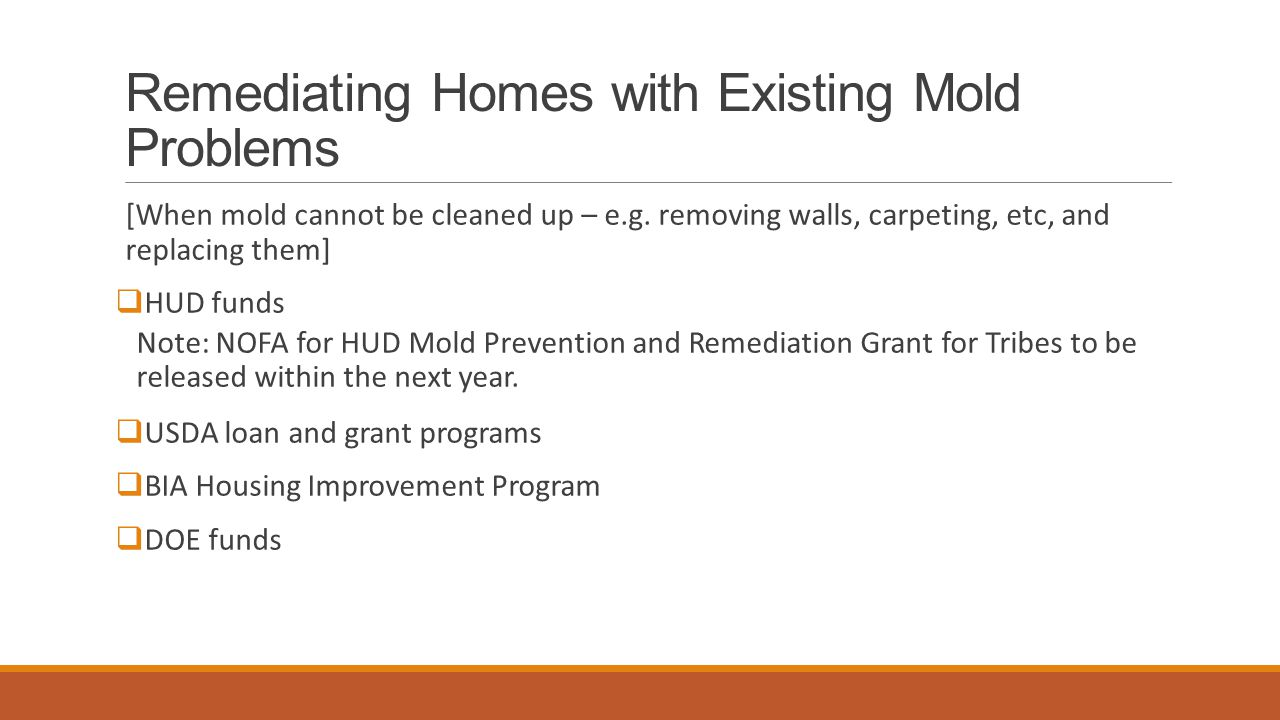 Remediating Homes with Existing Mold Problems