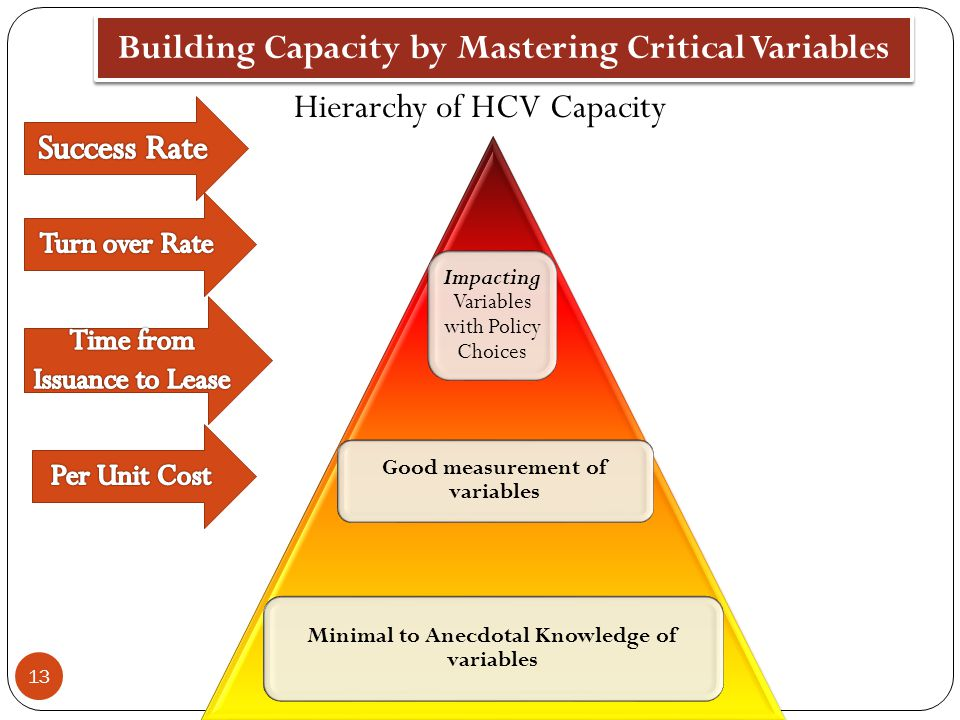 Building Capacity by Mastering Critical Variables
