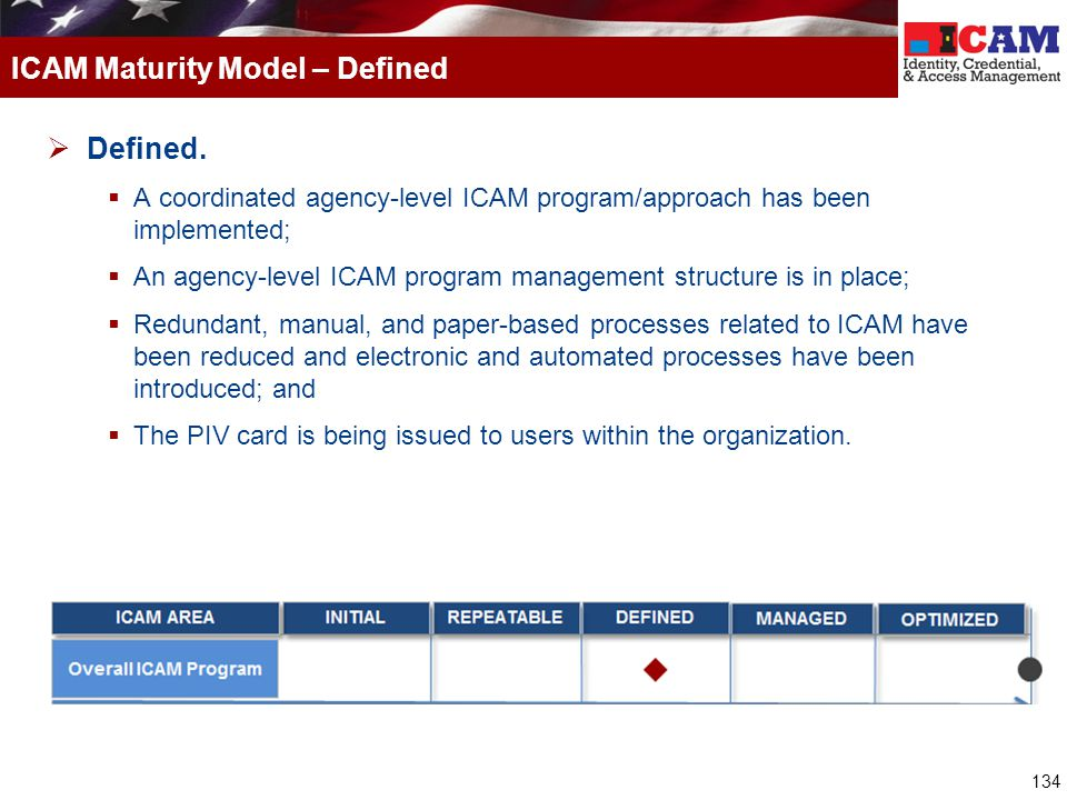 ICAM Maturity Model – Defined