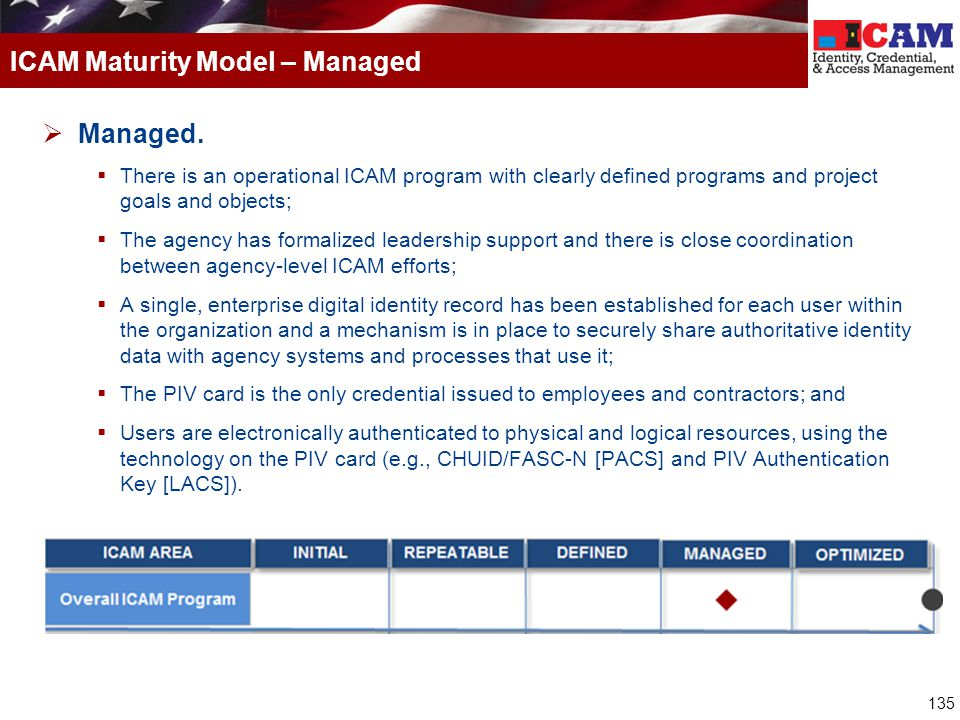 ICAM Maturity Model – Managed