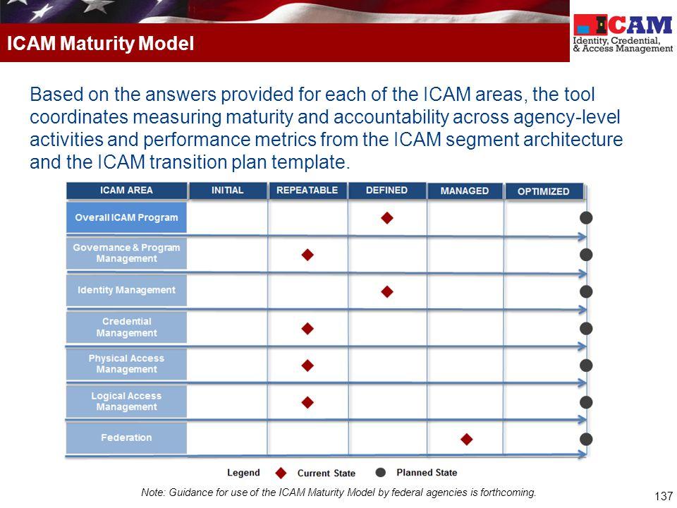 ICAM Maturity Model