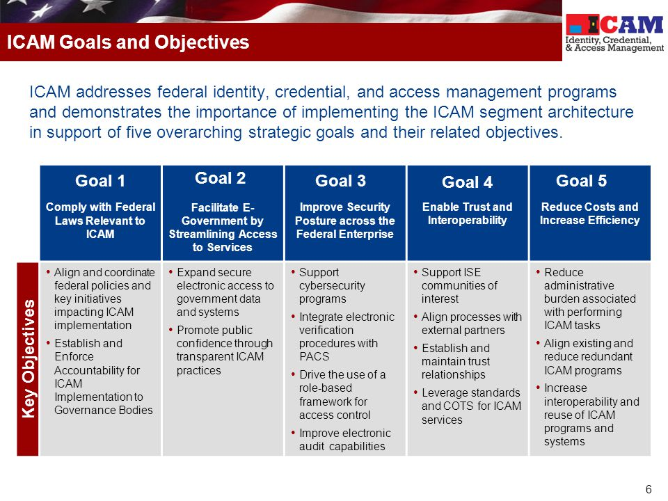 ICAM Goals and Objectives