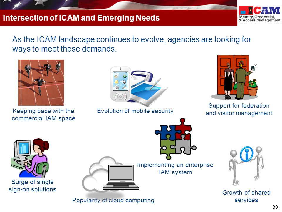 Intersection of ICAM and Emerging Needs