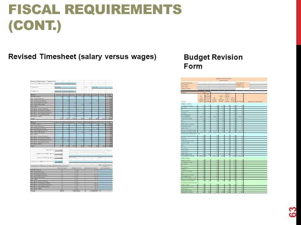 Fiscal Requirements (cont.)