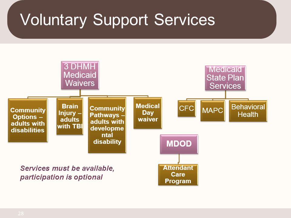 Voluntary Support Services