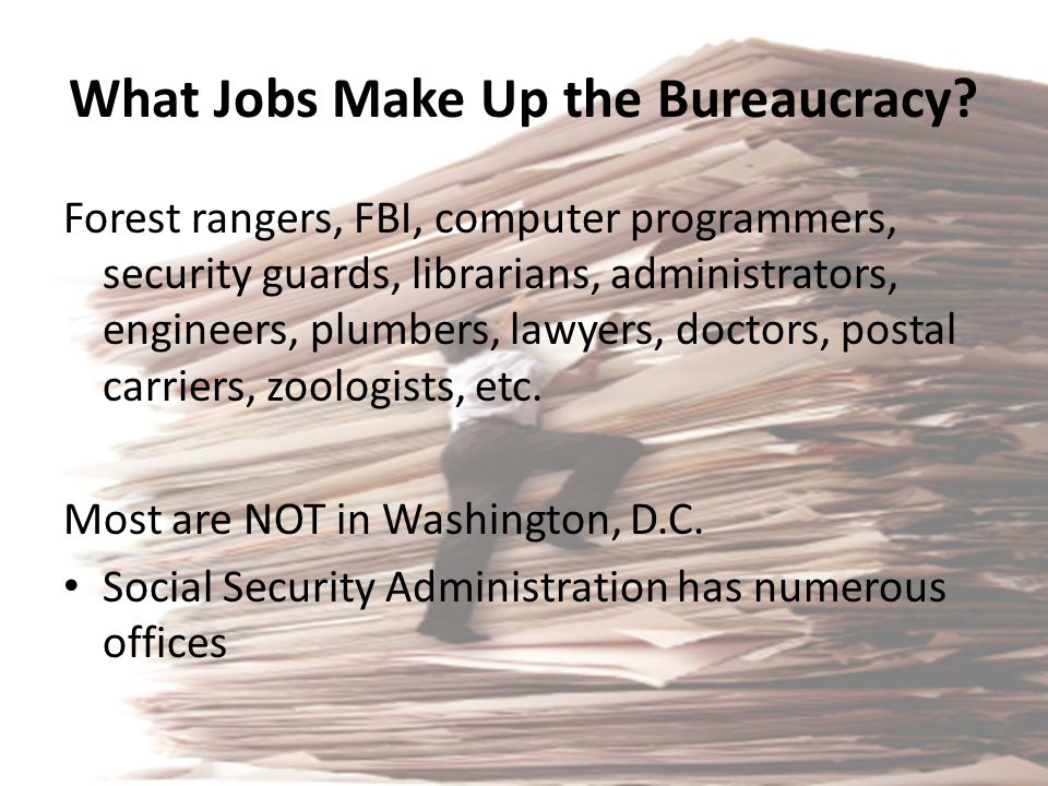 What Jobs Make Up the Bureaucracy