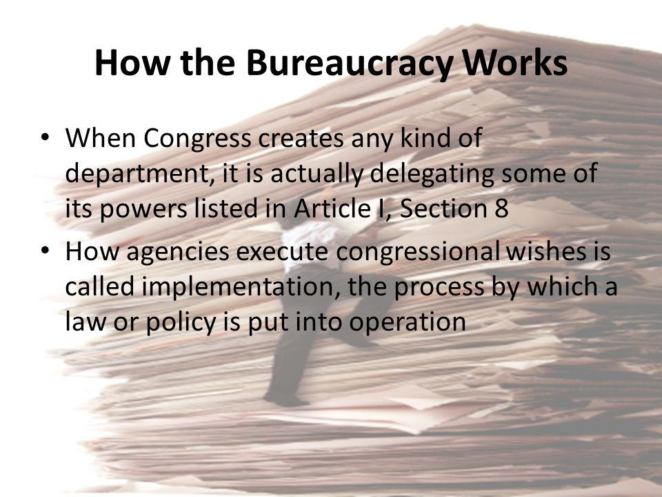 How the Bureaucracy Works