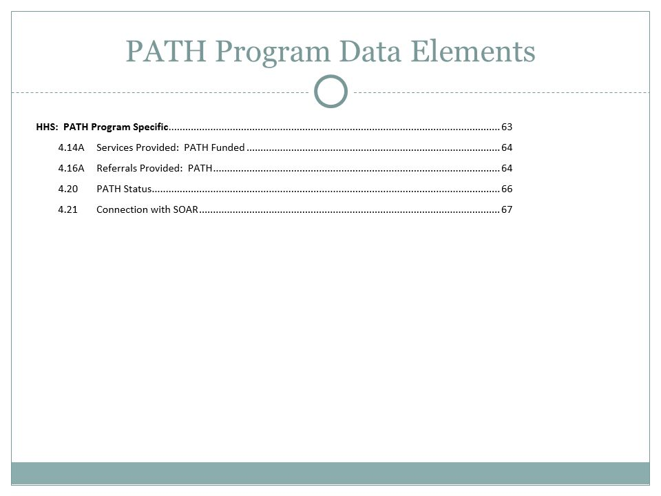 RHY Program Data Elements