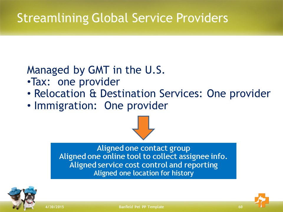 Streamlining Global Service Providers