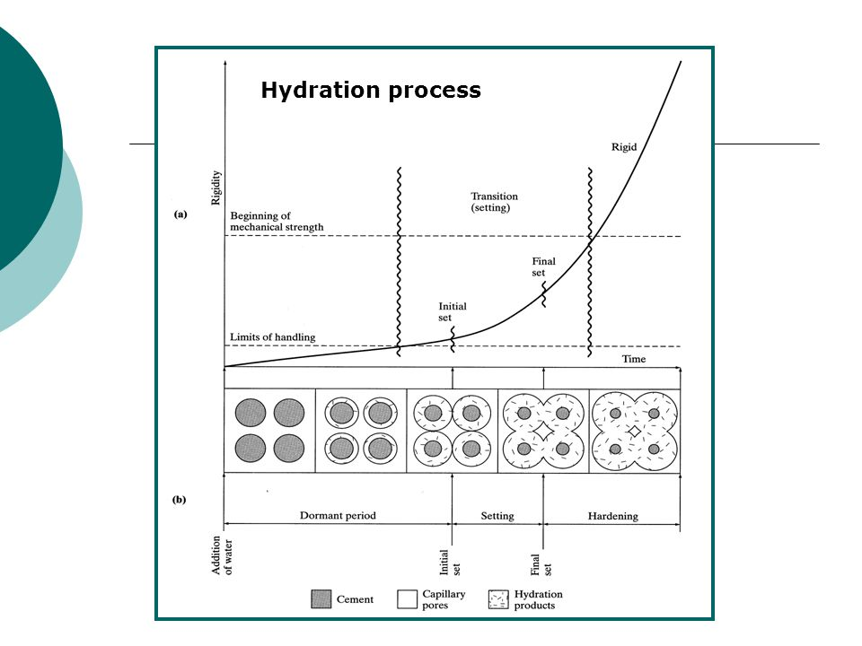 Hydration process Setting and hardening processes