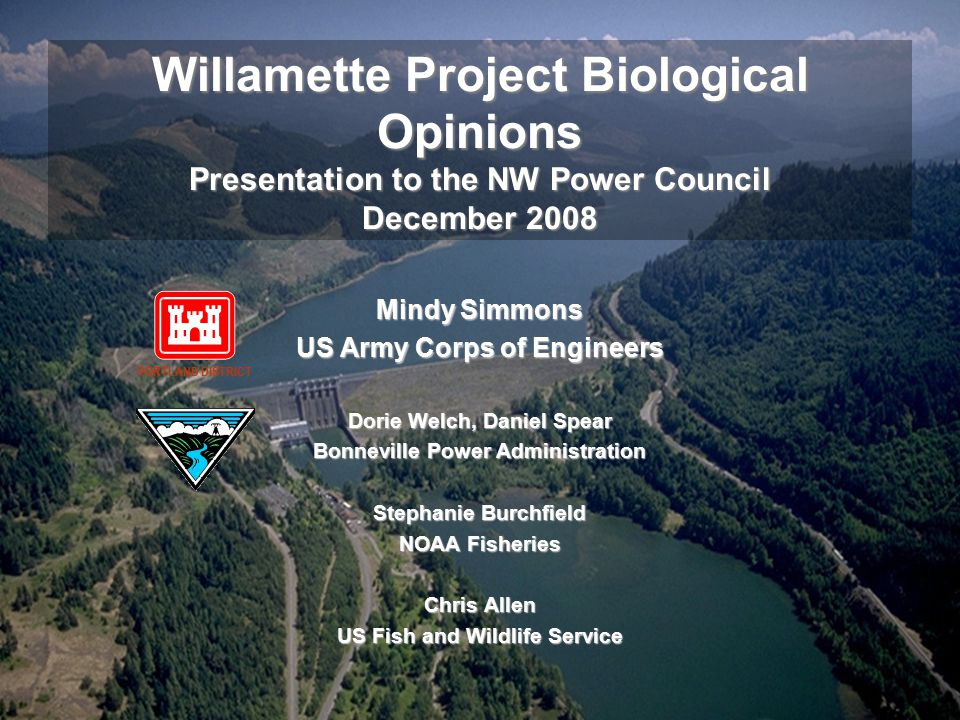 Willamette Project Biological Opinions Presentation to the NW Power Council December 2008