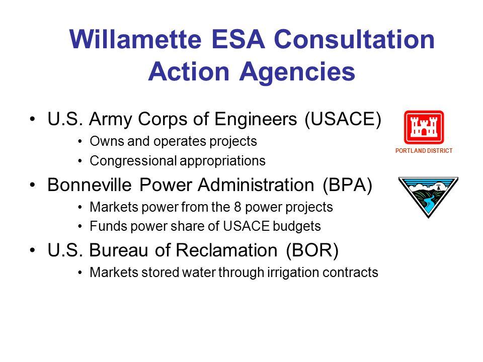 Willamette ESA Consultation Action Agencies