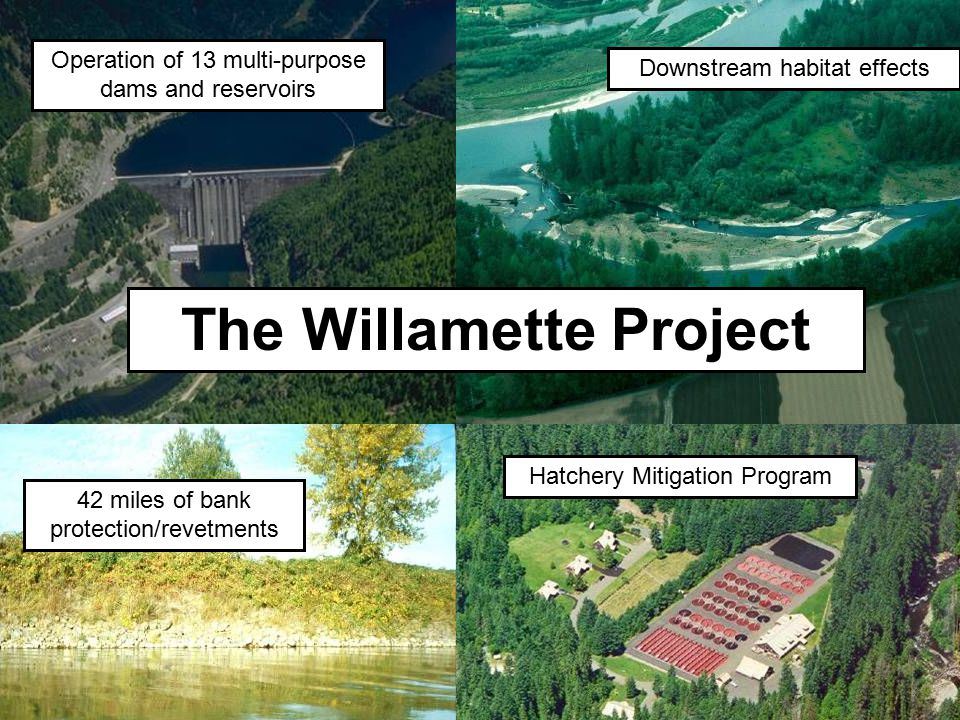 The Willamette Project