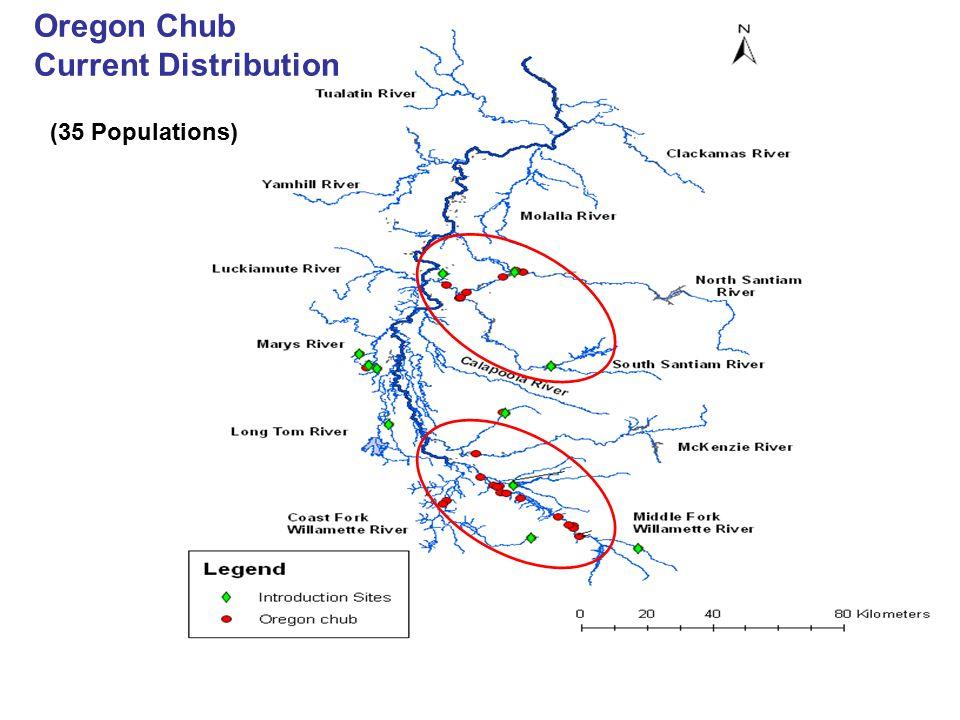 Oregon Chub Current Distribution