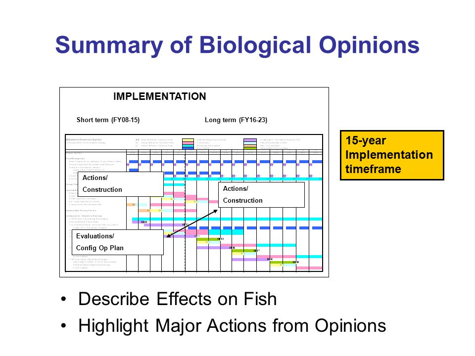 Summary of Biological Opinions